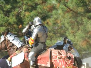chevalier combat